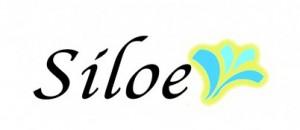 logosiloe